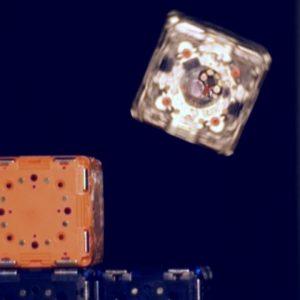 Кубики роботы собираются при помощи коллективного разума